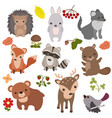 forest animals forest animals vector image vector image
