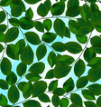 Green leaves canopy and sky in a seamless pattern vector image vector image