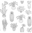 hand drawn houseplant vector image vector image