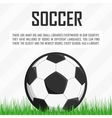 soccer ball on grass vector image vector image