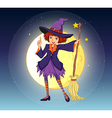 Witch holding Broom vector image vector image