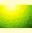 yellow green bio background vector image