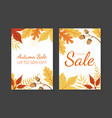 autumn sale card template with colorful leaves vector image vector image