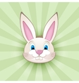 Cartoon bunny head on green vector image vector image