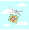 Drone Air delivery pizza vector image vector image