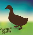 duck meat vector image vector image