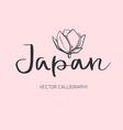 japan handwritten lettering calligraphy vector image vector image