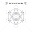 Metatrons cube vector image