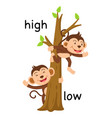 opposite words high and low vector image vector image