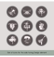 Set of icons for the sale honey 2 vector image vector image