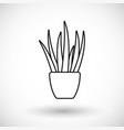 aloe vera thin line web icon vector image vector image