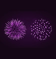 beautiful purple fireworks set bright fireworks vector image