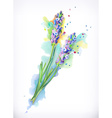 Lavender flowers watercolor painting mesh vector image vector image