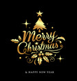 merry christmas golden lettering design on black vector image