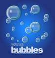 Water Bubbles vector image vector image