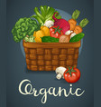 basket of fresh vegetables poster vector image vector image