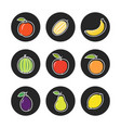 fruit outline icons on chalk rounds of set vector image vector image