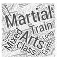 Mixed Martial Arts Training Gym Word Cloud Concept vector image vector image