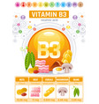 nicotinic acid vitamin b3 rich food icons healthy vector image vector image
