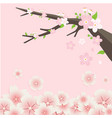 sakura tree flowers pink background image vector image