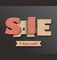 sale carton signboard vector image