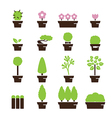 tree pot icon vector image vector image