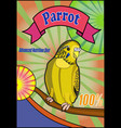 banner food for parrots vector image