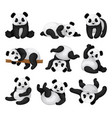 flat set of adorable panda in different vector image
