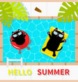 hello summer swimming pool black cat floating on vector image vector image