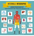 Internals infographic elements flat style vector image vector image