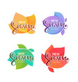 new season arrivals labels and badges for your vector image vector image