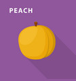 peach icon flat style vector image