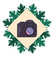 photography camera badge leaves tropical summer vector image vector image