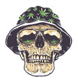 rasta skull in hat and sunglasses vector image