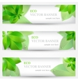 Set banner ecology colorful vector image vector image