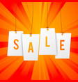shopping sale background vector image