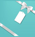 silver bow with mint background vector image vector image
