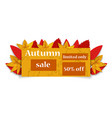 autumn limited sale concept background realistic vector image
