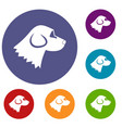 beagle dog icons set vector image vector image