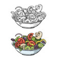 big bowl of green salad with tomatoes cucumbers vector image