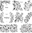 collection of floral a vintage elements for you vector image vector image