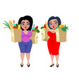 colorful cartoon fat women concept vector image vector image