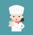 cute chef with hand okay sign flat design vector image vector image