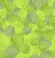 Green cabbage pattern Seamless background with vector image