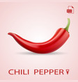 single red chili pepper isolated on a background vector image vector image