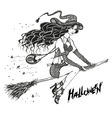 sorceress on a broom elegant fashionable witch vector image vector image
