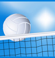 Volleyball and the net vector image