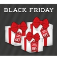 Black friday discountsoffers and promotions vector image