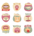 Cat life flat icons vector image