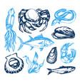 delicious seafood - vintage vector image vector image